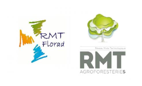11-12-2017   L'approche fonctionnelle pour la gestion des plantes adventices