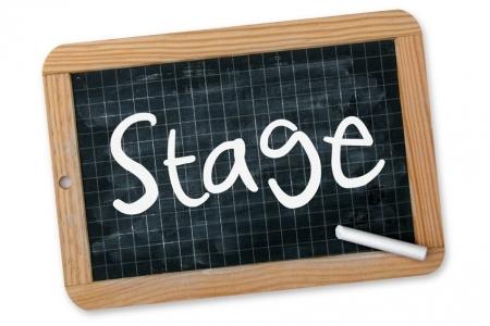 Bourse de stages GCHP2E 2021