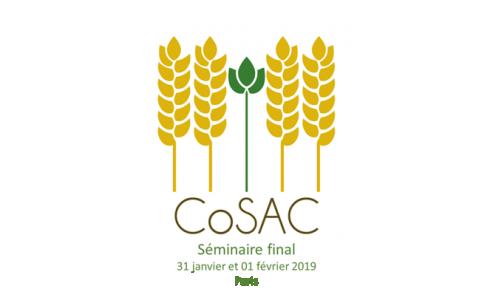 SAVE THE DATE: CoSAC - colloque final 31 janvier et  01 février 2019 à Paris